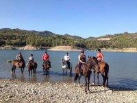 lago caballos seis personas