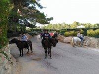 田间小路步行路线三匹马