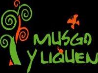 Musgo y Liquen