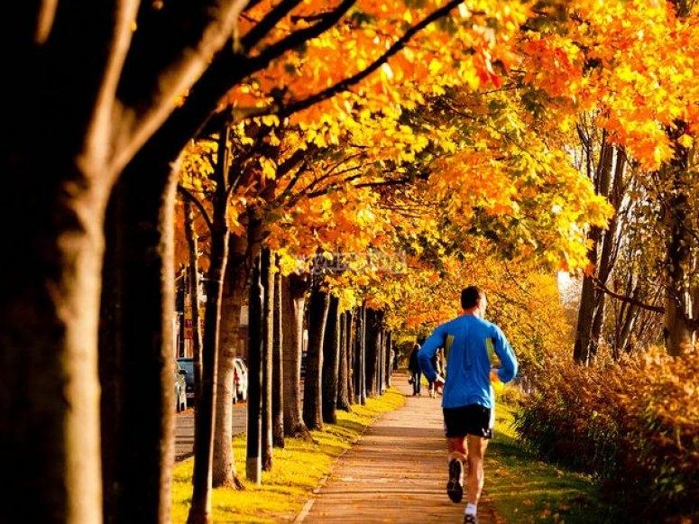 Correr para entrenar