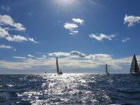 帆船帆船赛的帆船在阳光下的背景