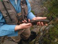 Pescando a mosca con profesionales