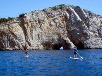 跳闸桨冲浪桨冲浪实践企业的激励机制解释监测