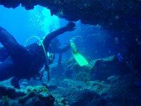 Discover the deep sea