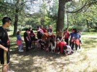 Campamentos de verano en Cáceres