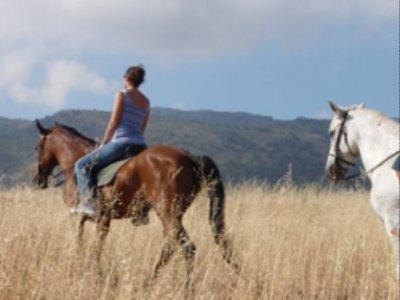 Makalu Aventura Rutas a Caballo