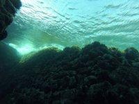 几种不同潜水的潜水课程