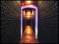 享受葡萄酒旅游