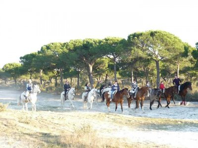 Horse Riding Tour in Doñana, Dunas Beach 2h