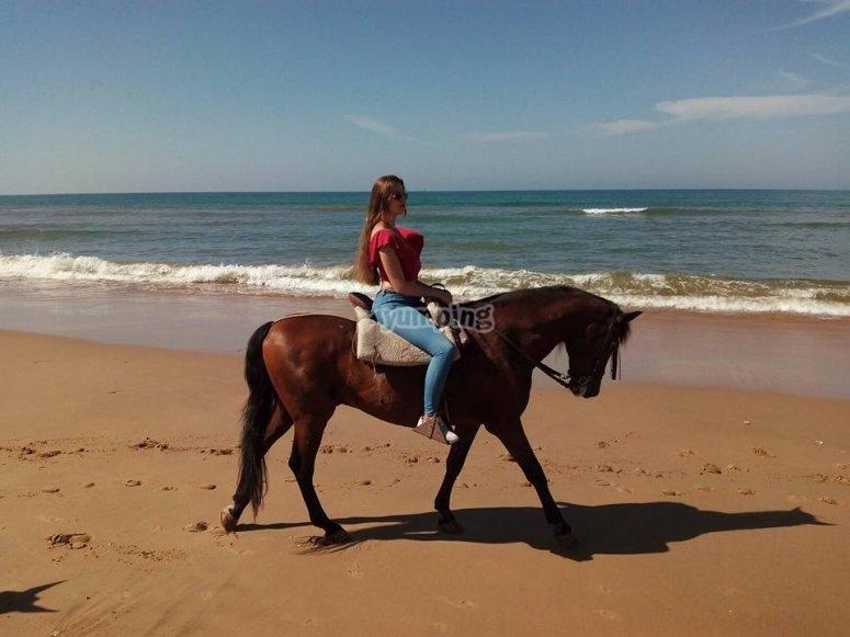 Amazona a caballo