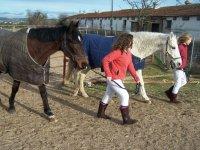 Devolviendo los caballos a sus boxes