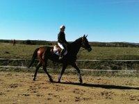 Montando a caballo en la finca