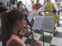 Girl playing the violoin