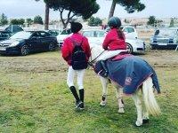 Sosteniendo al pony por las riendas