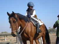 Clases de equitación en Ciudad Real