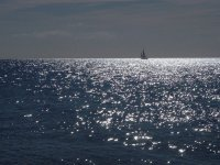 Barco al fondo del paisaje