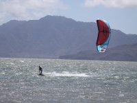 风筝冲浪专业人士行走的海风和海浪