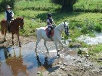 Rutas a caballo adecuadas para  principiantes