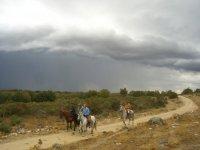 Rutas a caballo en entornos mas fascinantes