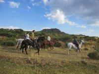 Ruta a caballo por los Valles de Gredos