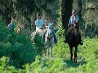 Excursiones en caballo en Cádiz