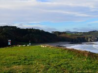 Frejulfe beach