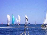 veleros en el mar
