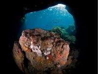 Buceo en cuevas submarina