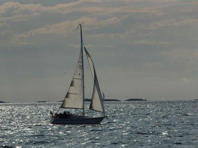 Mar Brava Vela