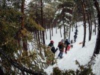 穿过格拉纳达森林的雪靴