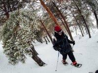 内华达山脉冬季远足
