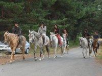 Excursiones a caballo en el campo