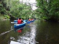 Andare in kayak attraverso la vegetazione