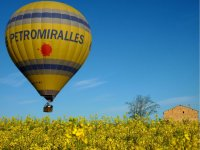 A balloon over a yellow flower field