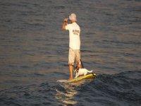 Paddle surf con tu amigo perruno