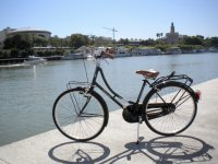 Bici junto al Guadalquivir