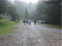 Excursion de grupo