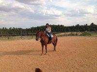 Clases de equitación en Cuenca