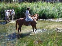 Equitación por bellos paisajes