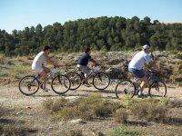 Excursiones guiadas en bici de montaña