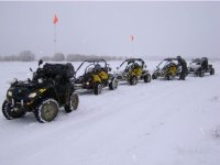 Buggies en la nieve