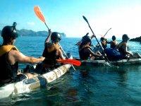 kayaks en linea