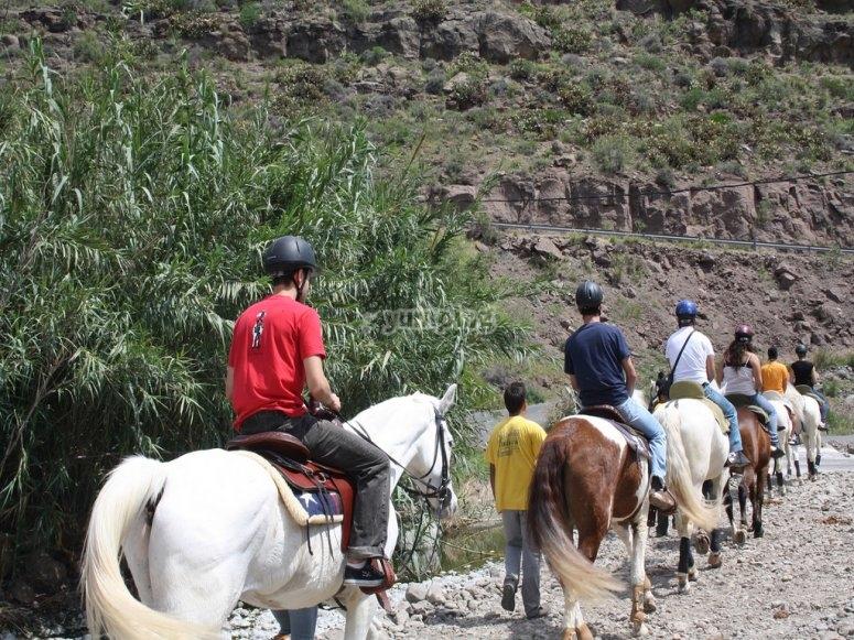 Pasea a caballo por el Montnegre