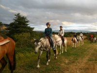 Paseando con los caballos por el campo