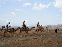 ruta a camello