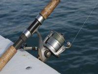在地中海捕鱼