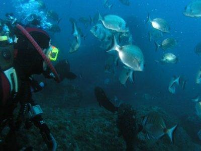 Club Buceo Arrecife