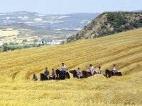 Los Monegros