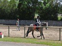 a ride on horseback