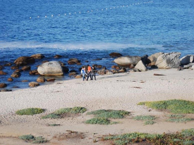 Paseos a la orilla del mar